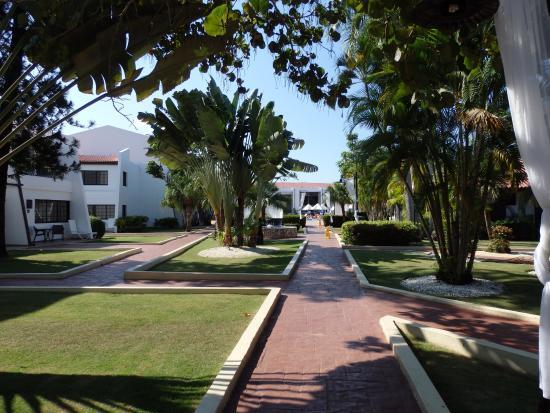 BlueBay Villas Doradas Photo