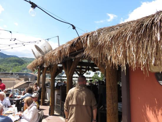 Loco Burro: Rooftop
