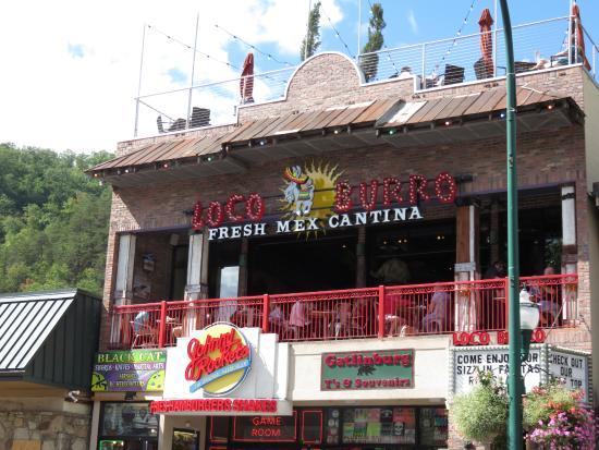 Loco Burro: Front outside