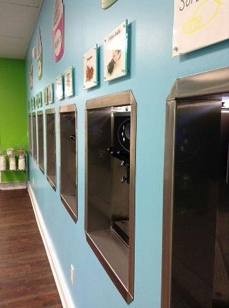 Big Rapids, MI: Toppings Frozen Yogurt