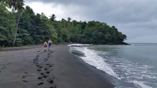 Black bay beach grenada all you need to know before for Black sand beach caribbean