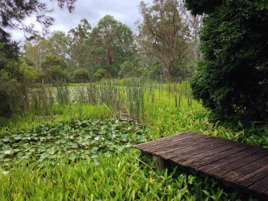 Barney View, Austrália: photo8.jpg