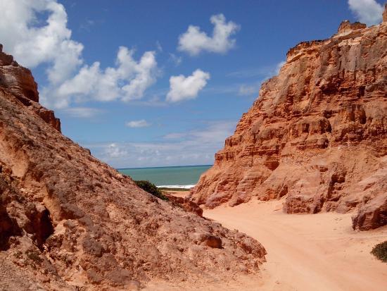 Praia do Gunga Photo