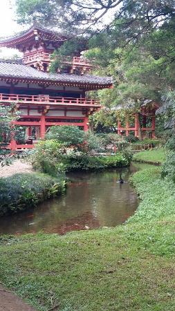 Kaneohe, ฮาวาย: 20160111_161454_large.jpg