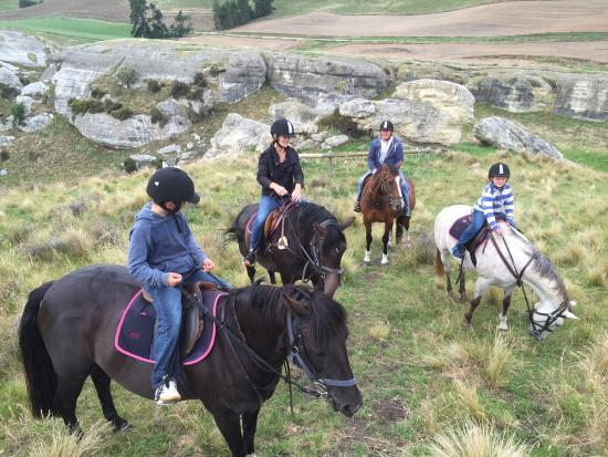 ‪Weka Pass Horse Treks & Riding Centre‬