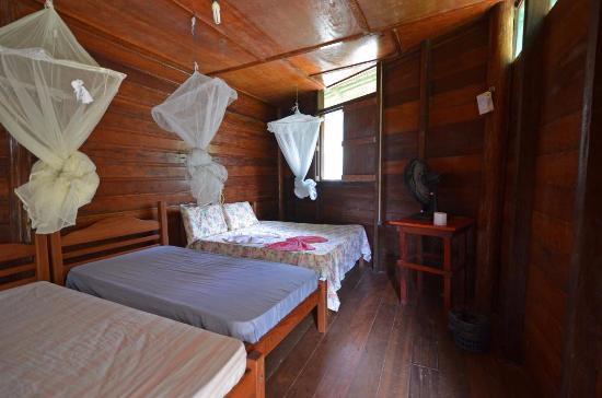 Careiro, AM: Ararinha Jungle Hotel