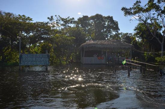 Careiro: Ararinha Jungle Hotel