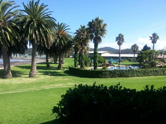 Waitangi, Neuseeland: 20160123_164246_large.jpg