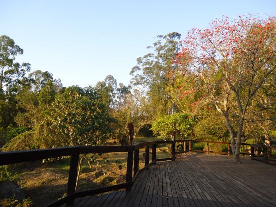 Изображение Jatinga Country Lodge