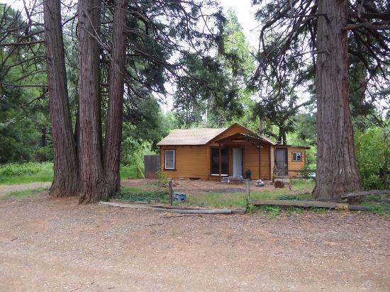Shingletown, Kalifornia: Cabin 1