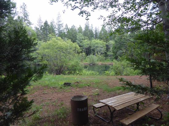 Shingletown, Kalifornien: Tent Site Overlooking Pond