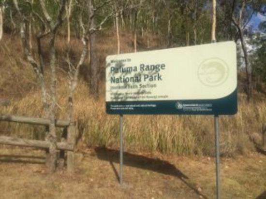 Ingham, Australië: 15 minute drive to Jourama Falls