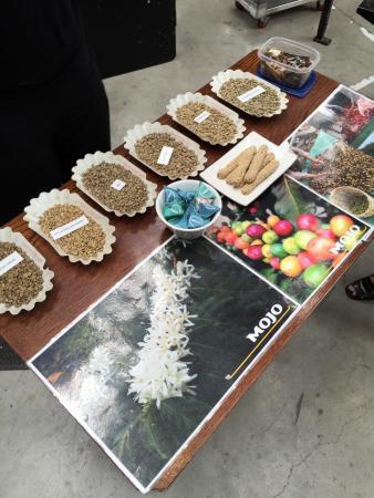 Zest Food Tours of New Zealand: photo2.jpg