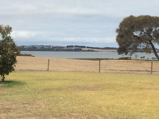 Rhyll, Avustralya: The view from the vineyard