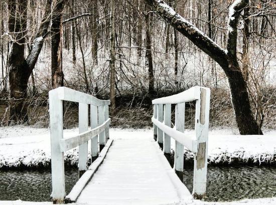 Sidney, OH: Tawawa Park