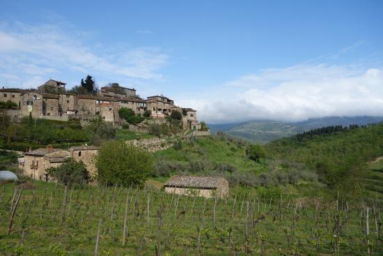 Greve in Chianti, Italia: View from the winery