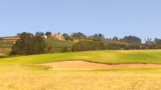 Devonvale Golf & Wine Estate: IMAG0144_large.jpg