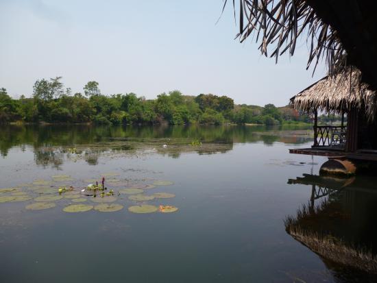 Bamboo House รูปภาพ
