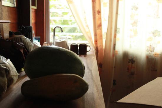 Windschief Cabanas: Fruits on the desk