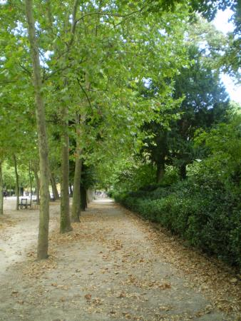 Promenade plantee-bild