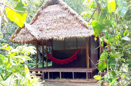 Madidi National Park, Bolivia: Exclusive cabin with private bathroom