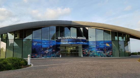 Malta National Aquarium: 20151230_161011_large.jpg