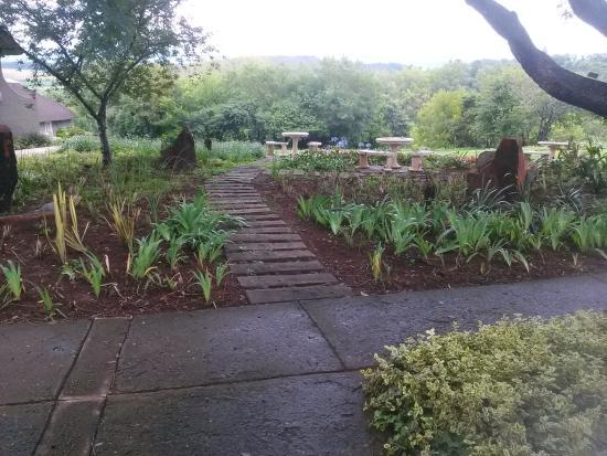 The Nest - Drakensberg Mountain Resort Hotel: garden