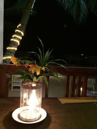 Banana Garden: photo1.jpg