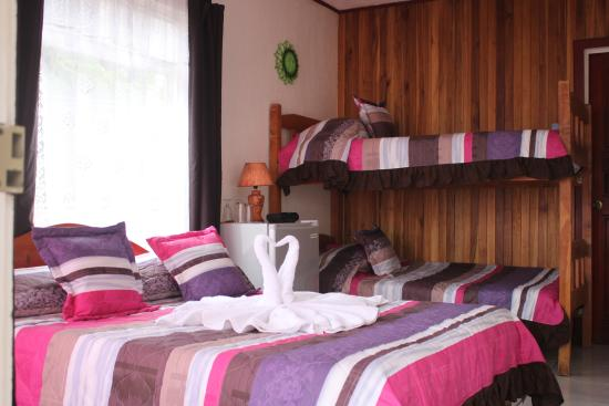 Hotel Sloth Backpackers Bed & Breakfast: Triple Room