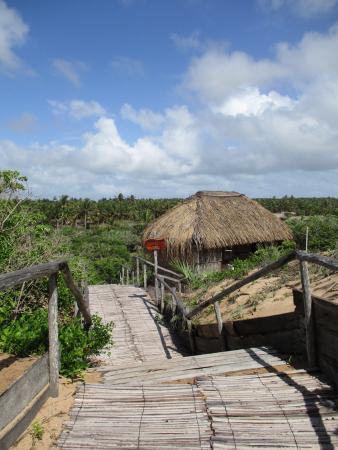 Mango Beach Lodge Foto