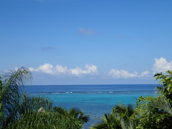 Tranquilseas Eco Lodge and Dive Center: The view from our room!