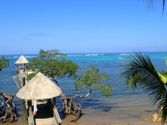 Tranquilseas Eco Lodge and Dive Center: The dock and beach