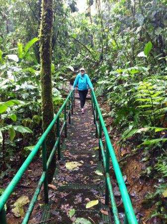 Tenorio Volcano National Park, Costa Rica: Our anniversary stay at rio Celeste Hideaway
