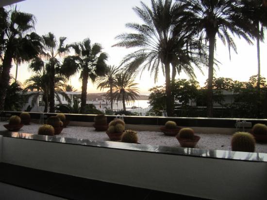 Bilde fra Seaside Palm Beach