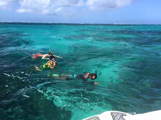 Zoe Snorkeling Charter: Duane, snorkeling with my son and brother-in law