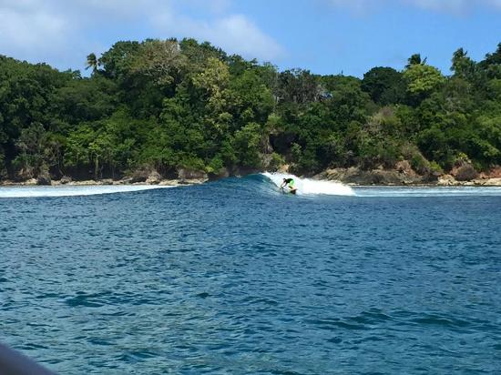 Zoe Snorkeling Charter: Catching a wave