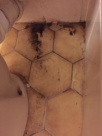 Himley, UK: Damp dirty and blood on the bathroom door!
