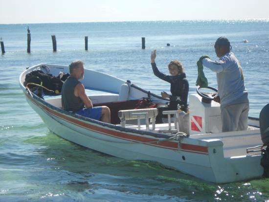 Hacienda Tres Rios Resort & Nature Park: Scuba Diving crew