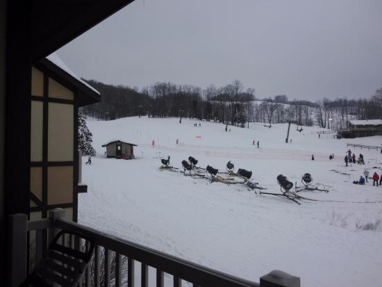 Mountain Run at Boyne: View of people skiing on hill from our room