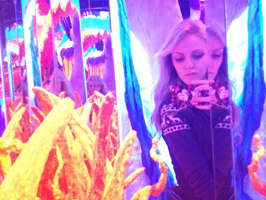 Electric Ladyland - the First Museum of Fluorescent Art: Electric Ladyland