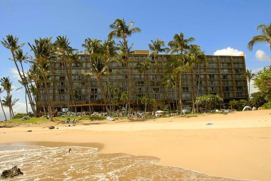 the top 10 things to do near days inn maui oceanfront kihei. Black Bedroom Furniture Sets. Home Design Ideas