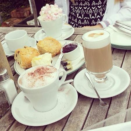 Dunwich, UK: Hot Chocolate & Cream Scones