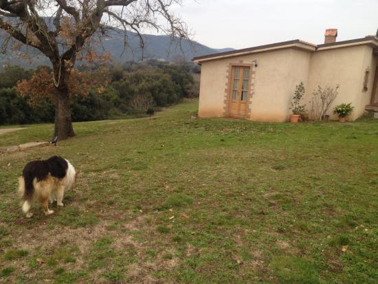 Campagnatico, Italie : photo6.jpg
