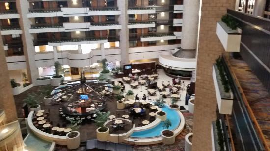 Embassy Suites by Hilton Orlando - International Drive / Convention Center: 20160124_104449_large.jpg