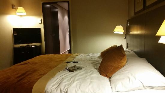 Hotel Auteuil - Manotel Geneva: 20151231_223622_large.jpg
