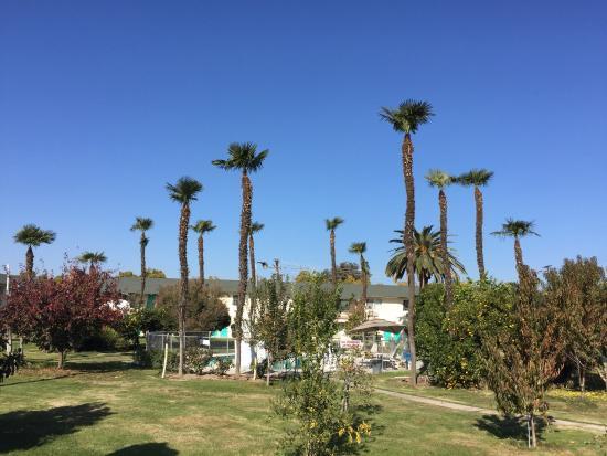 Tulare, Califórnia: photo8.jpg