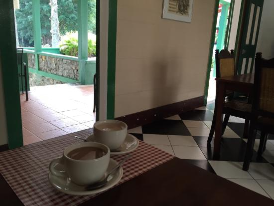 Hacienda Gripinas: Beautiful grounds and lovely quiet location and delicious hot coffee on a cool January morning i