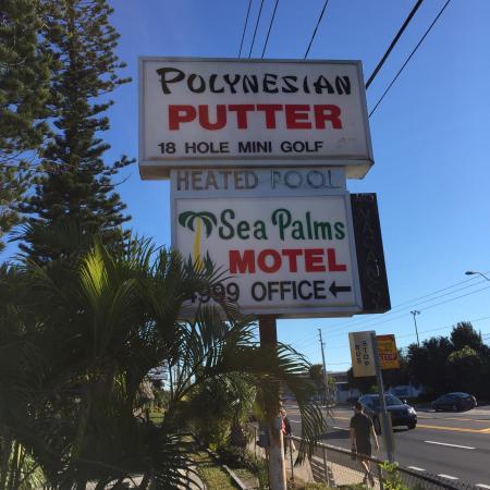 Polynesian Putter: photo0.jpg