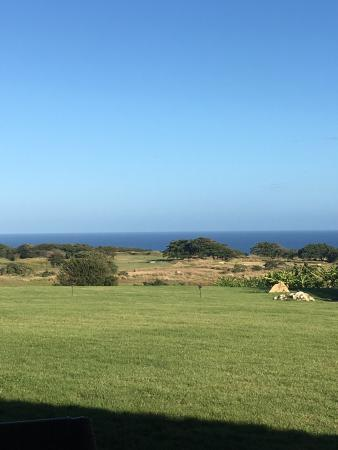 Royal Isabela: Beautiful magical place