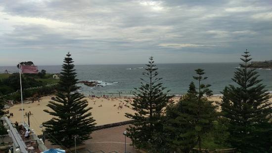 Куги, Австралия: IMAG7661_large.jpg